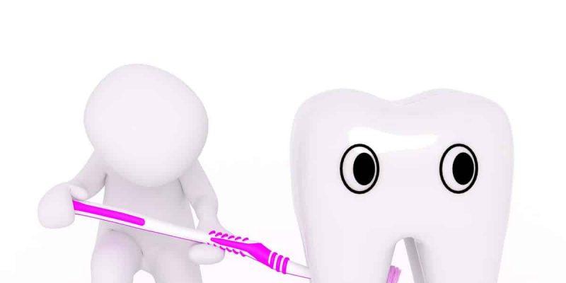 מברשת שיניים ושן